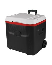 IGLOO 26 LT FREEZER